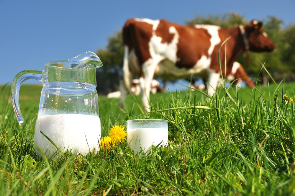 is biologische melk gezonder
