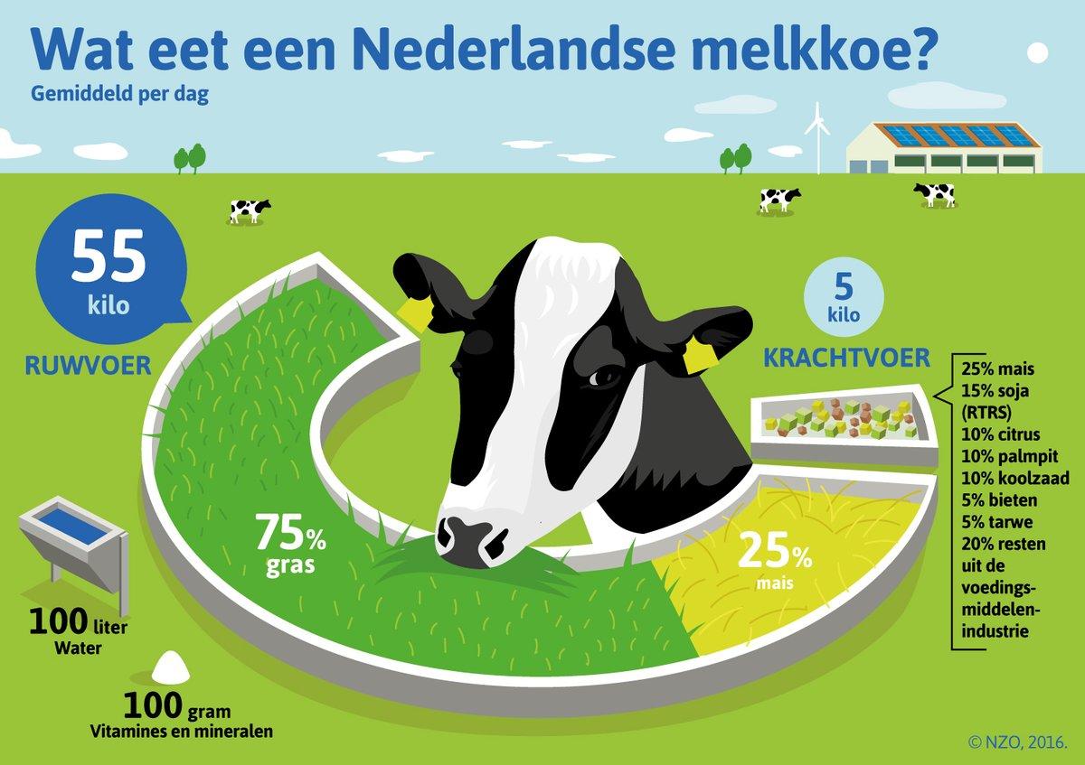 Gemiddelde melkproductie per koe per dag