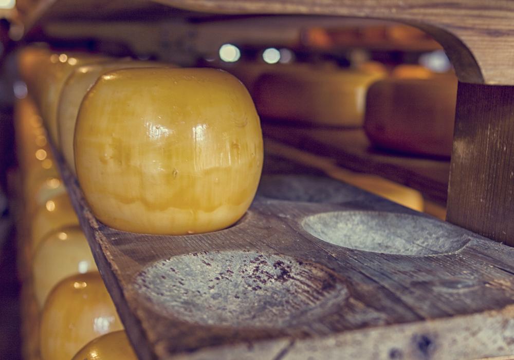 boerenkaas maken