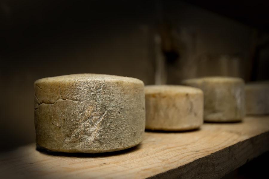 oudste kaas