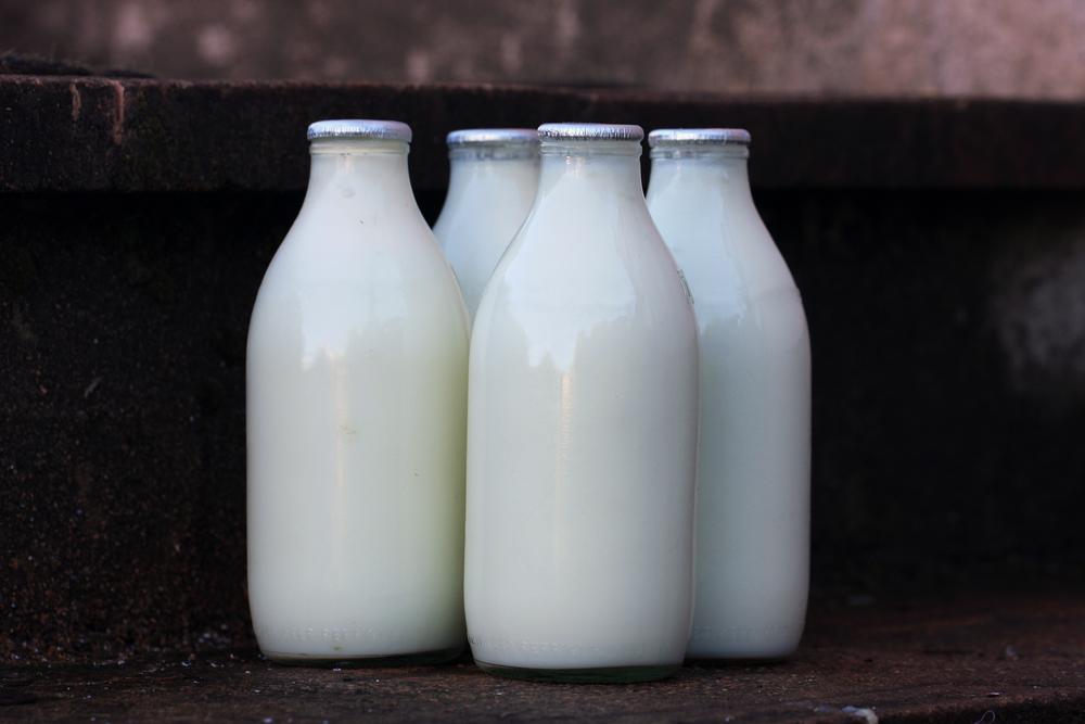 iconische melkfles