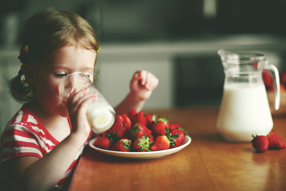 melk yoghurt roomboter immuunsysteem